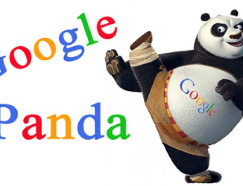 الگوریتم گوگل پاندا چیست؟ نکاتی که باید در این الگوریتم رعایت کرد