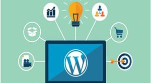 داشتن وبسایت