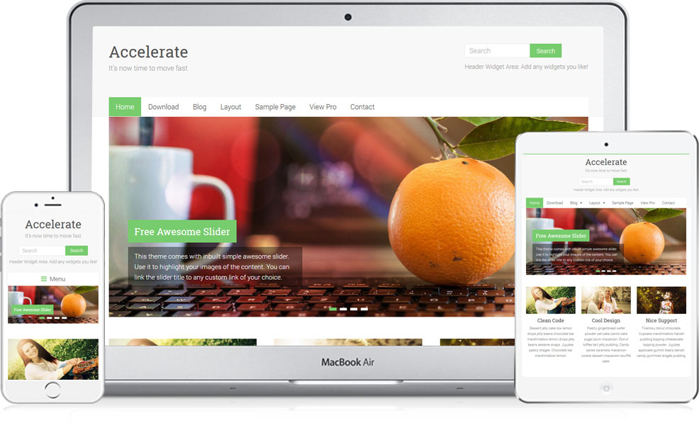 accelerate wordpress theme ofoghweb