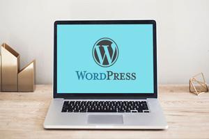 wordpress training at sourcekode